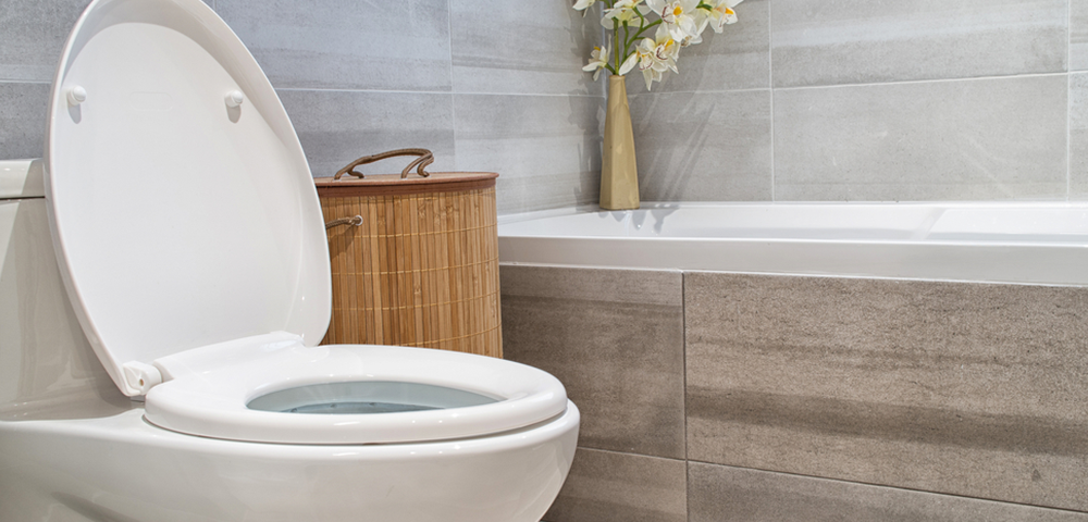 pph 1 1000x480 - Are These Toilet Paper Alternatives Safe for Your Plumbing?